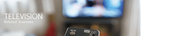 TV関連事業